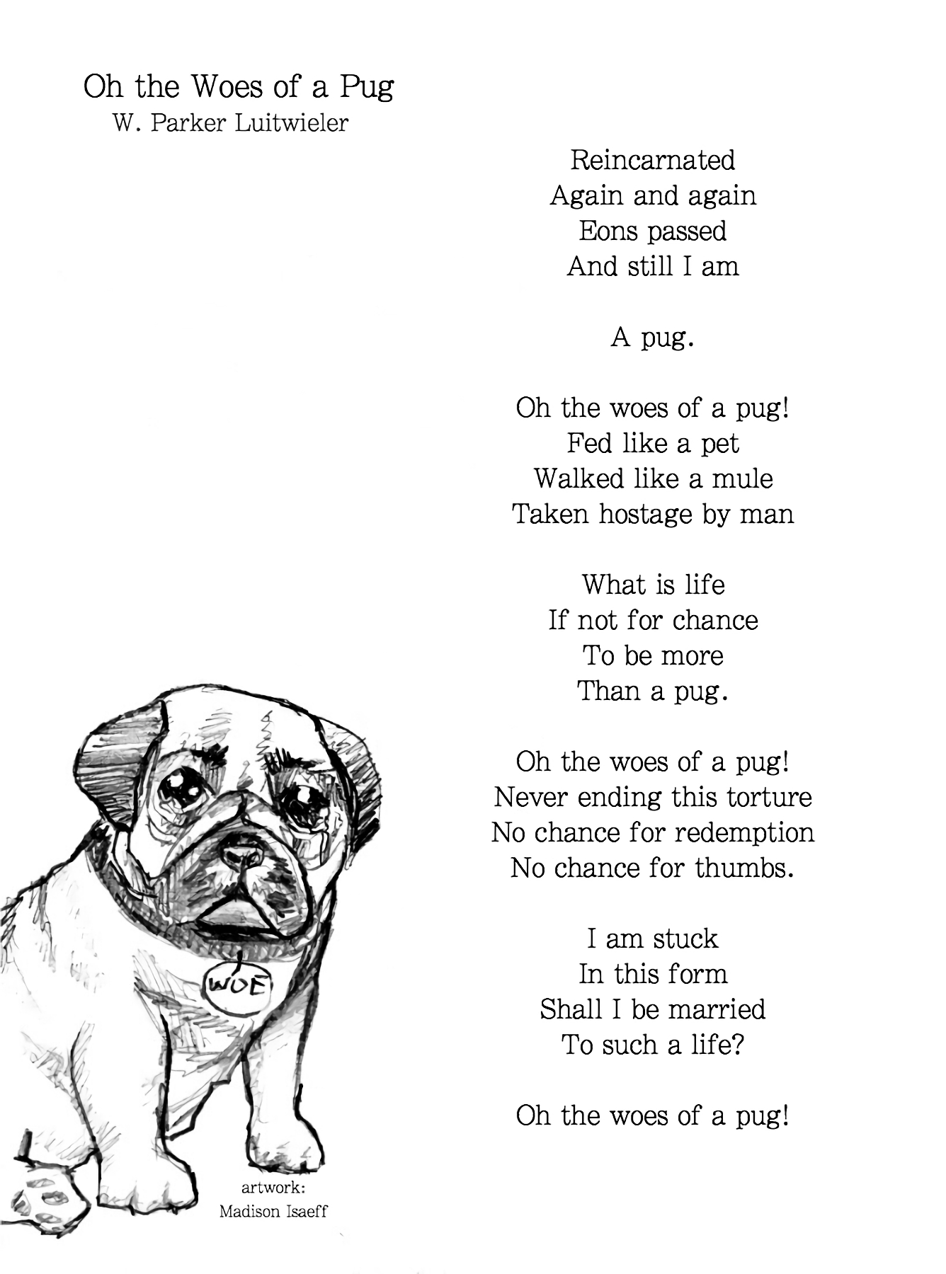 Copy of Oh the Woes of a Pug (Larger Vers)